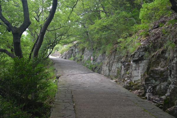03登山道3
