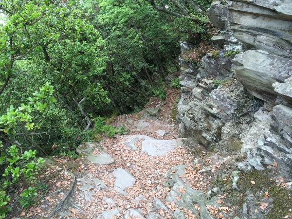 28北嶺登山道1