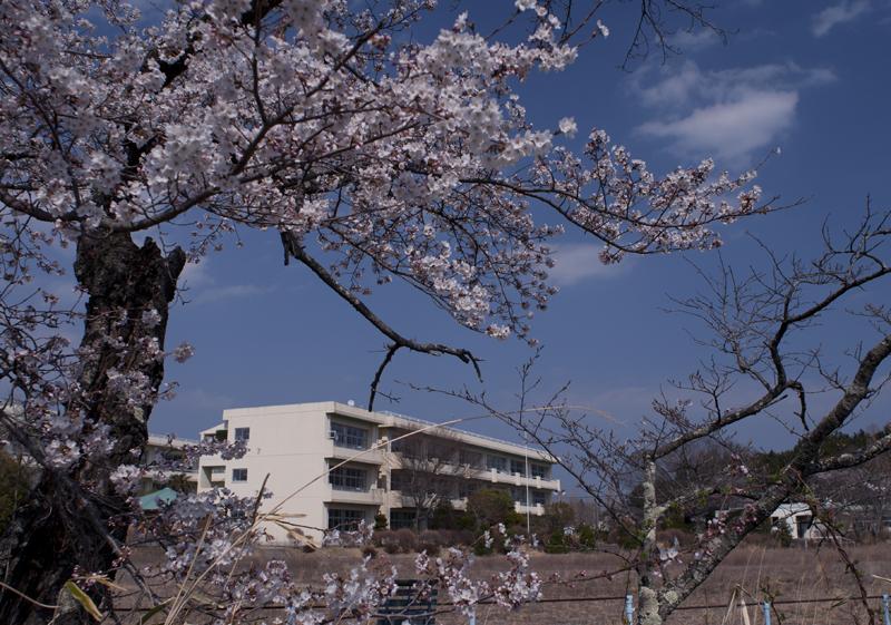 富岡・小中学校_2014.4.8_2
