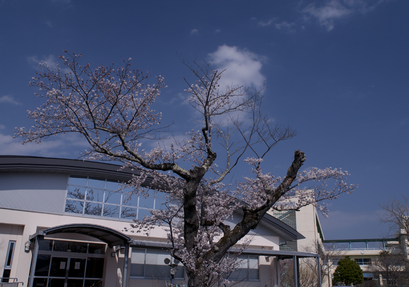 富岡・小中学校_2014.4.8_4
