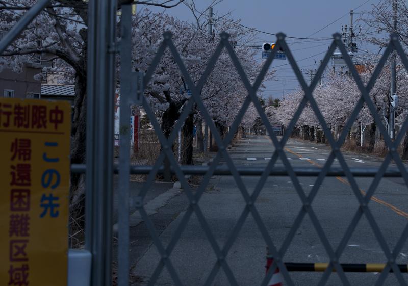 富岡・夜ノ森_2014.4.8_4