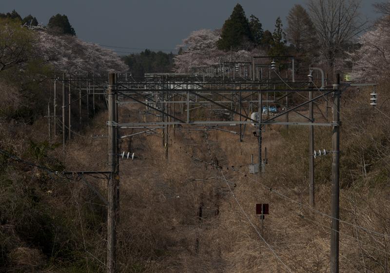 富岡・夜ノ森駅_2014.4.8_6