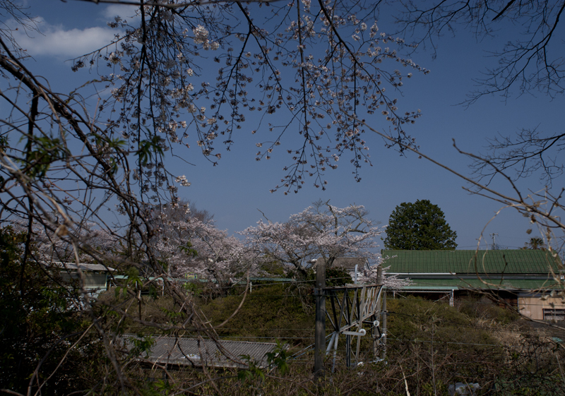富岡・夜ノ森駅_2014.4.8_7