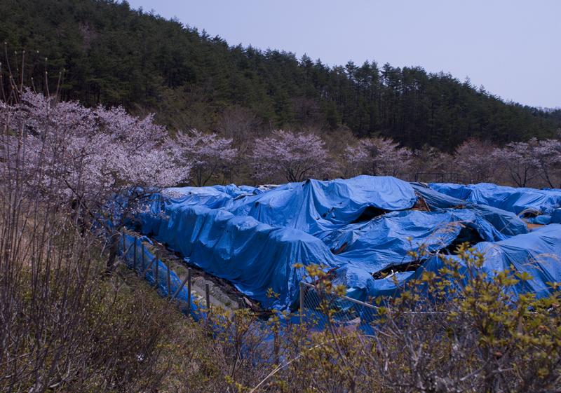 川内_2014/04/27_8