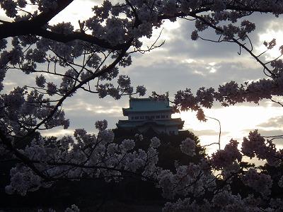 2014 名城公園 (2)
