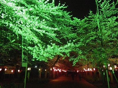 護国神社 (1)