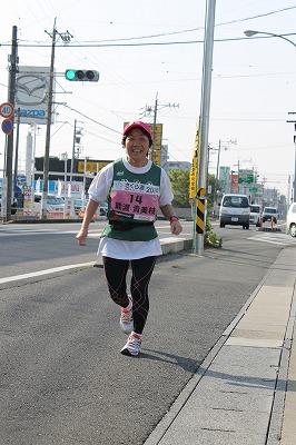 さくら道2014 (7)