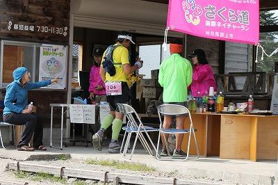 さくら道22014年 (6)