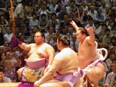2014名古屋場所大相撲 (4)