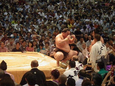 2014名古屋場所大相撲 (10)