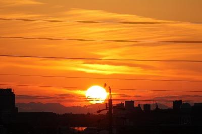 カラスと夕日 (1)