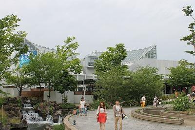 2014淡水魚水族館 (11)