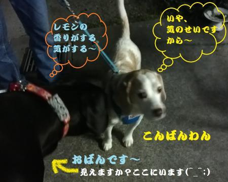 001_convert_20140606131036.jpg