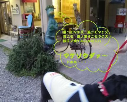 025+-+繧ウ繝斐・_convert_20140615132836