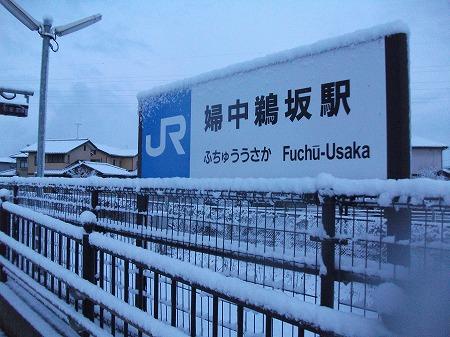 fuchuusaka (2)