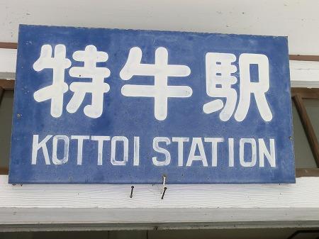 KOTTOI001 (11)