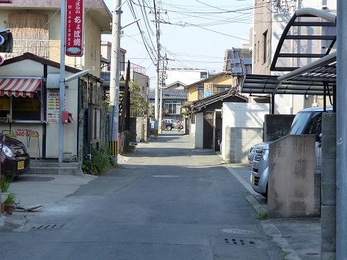 ⒕春熊本 (44)