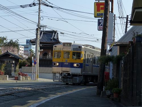 ⒕春熊本 (58)
