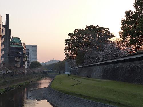 ⒕春熊本 (88)