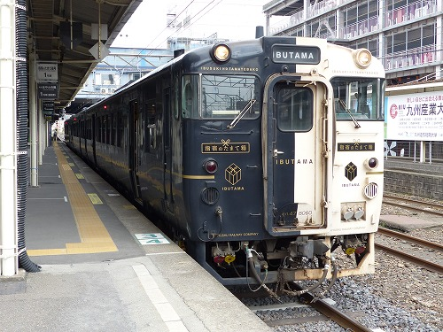 kagosiha14001 (3)