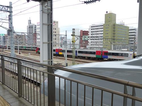 kagosiha14001 (14)