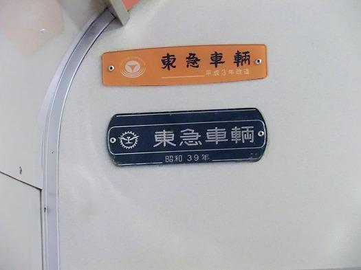 146004東京 (18)