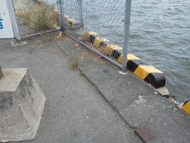 博多湾 ゴミ1