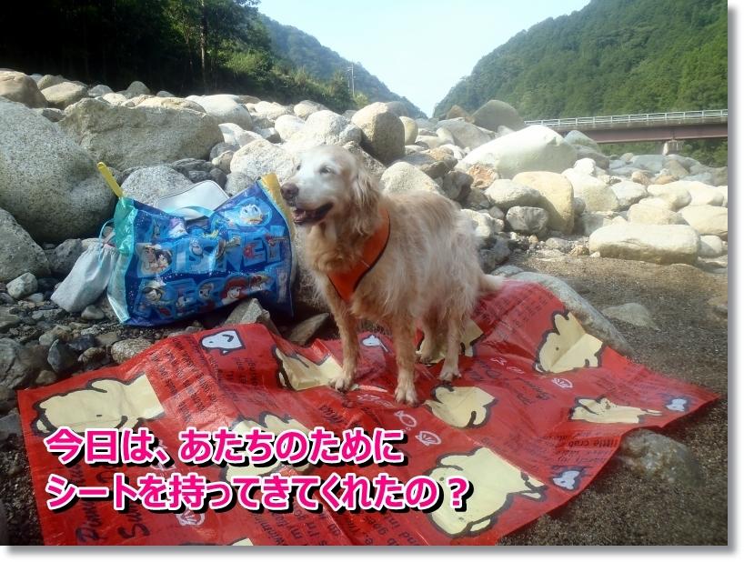 銚子川 015