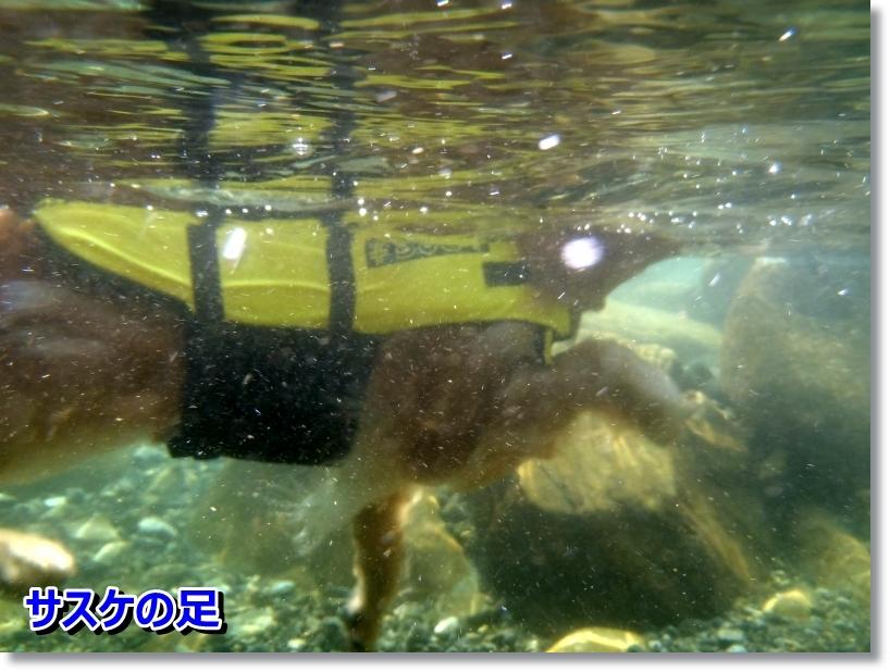 銚子川 050