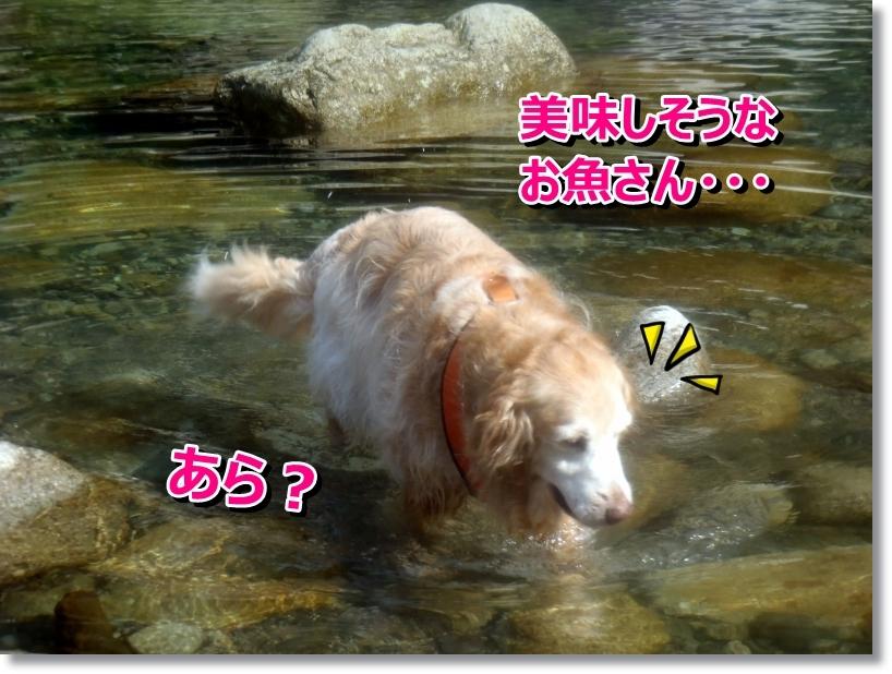 銚子川 073