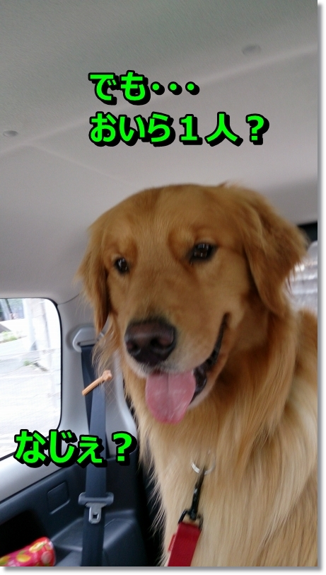 DSC_0009_20140630102309e33.jpg