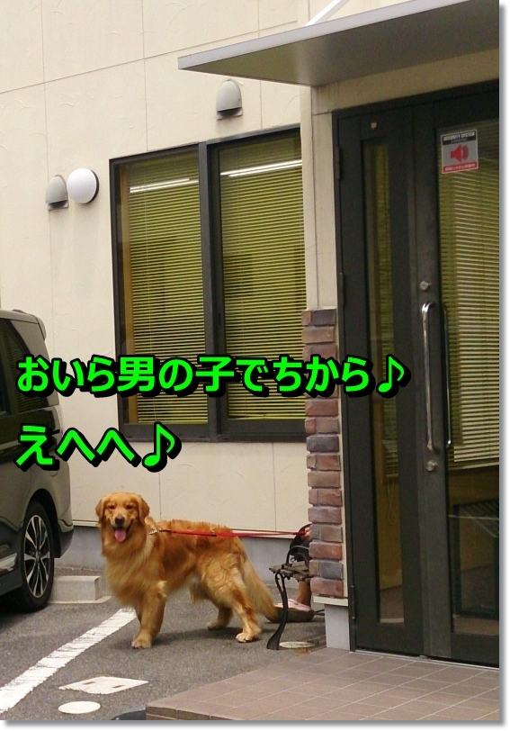 DSC_0014_20140630102314637.jpg