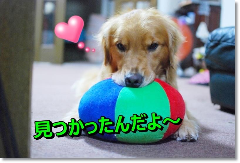 DSC_0027_2014081801105560c.jpg