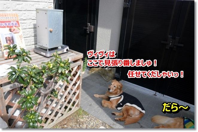 DSC_0643_201403210844550b0.jpg