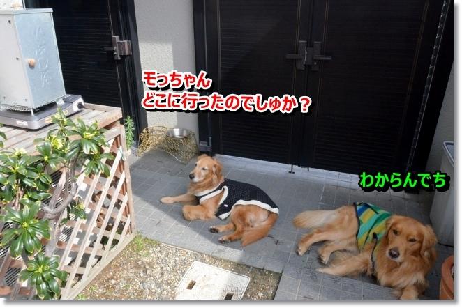DSC_0644_20140322110335cc9.jpg