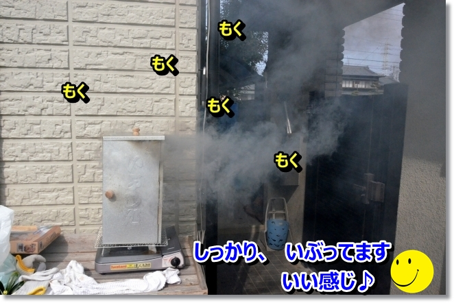 DSC_0658_20140322110445559.jpg