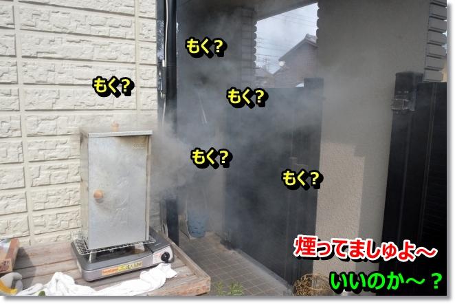 DSC_0659_20140322110447b3f.jpg