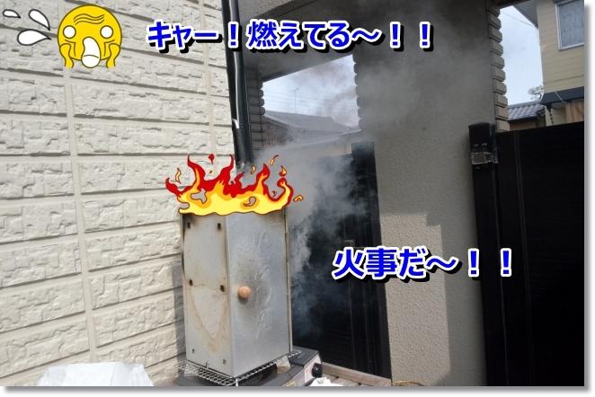 DSC_0660_2014032211044857a.jpg