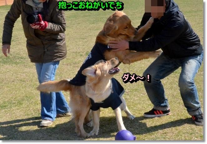 DSC_1204_20140328212248f2d.jpg