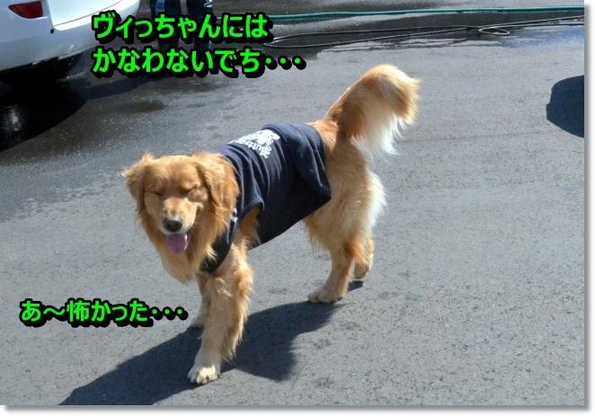 DSC_1312_20140408081044460.jpg