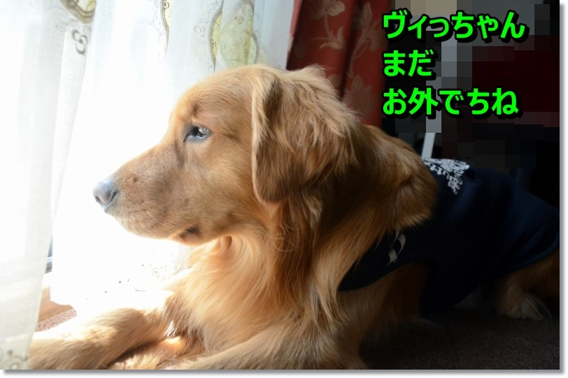 DSC_2104_201405141050309e6.jpg
