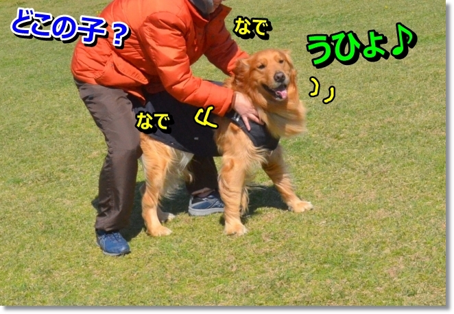 DSC_2686.jpg
