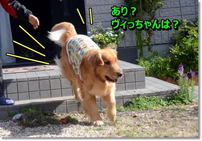 DSC_2861.jpg