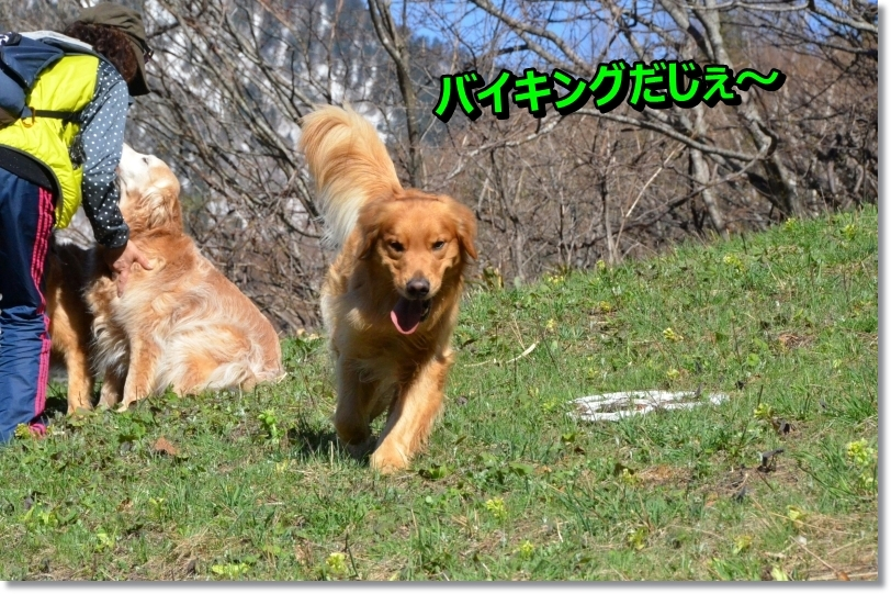 DSC_3776_20140509102423ba1.jpg