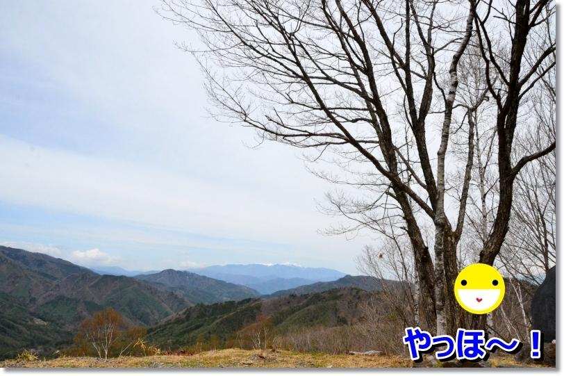 DSC_4797.jpg