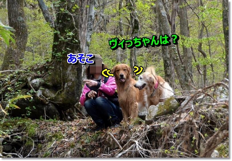 DSC_5209.jpg
