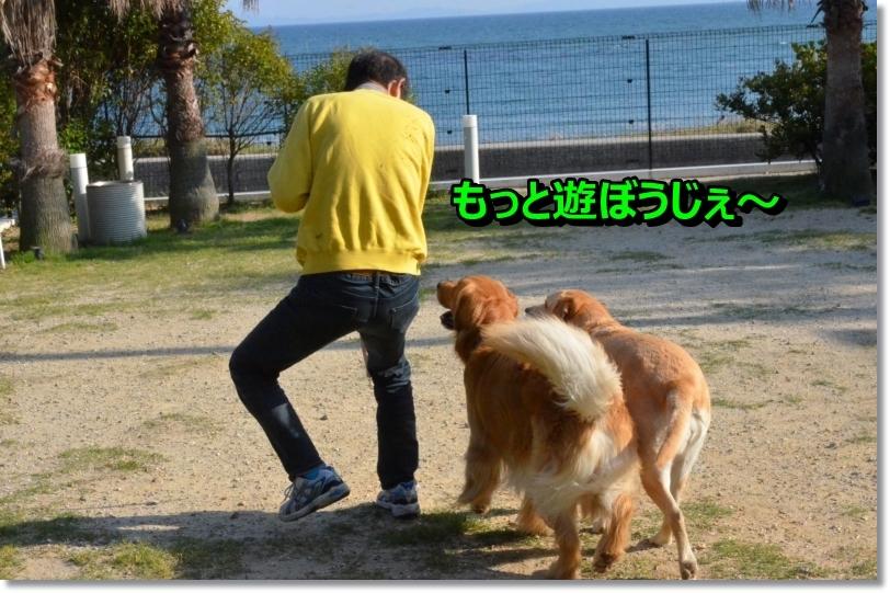 DSC_5437_20140528112749601.jpg