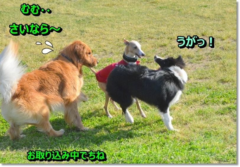 DSC_5648.jpg
