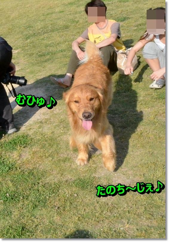 DSC_5664_20140602110955513.jpg