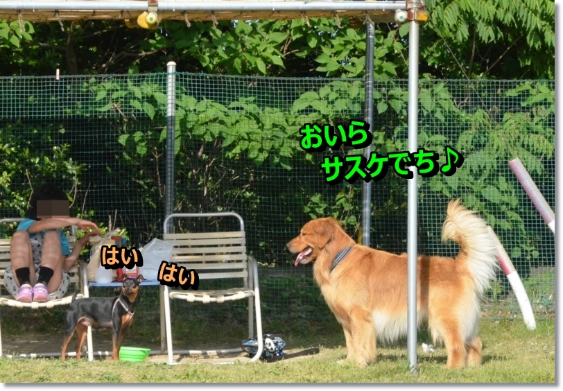 DSC_5690.jpg